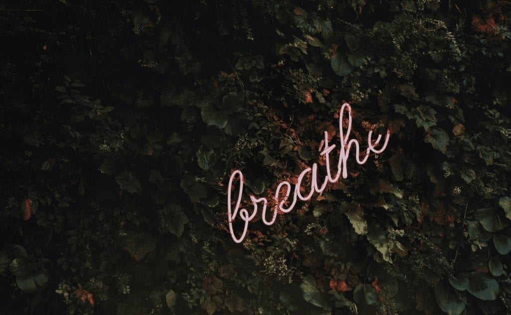 how to get rid of sentimental possessions - breathe neon sign on leaves